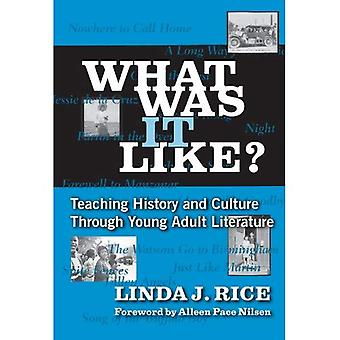 What Was It Like?: Teaching History and Culture Through Young Adult Literature (Language & Literacy)
