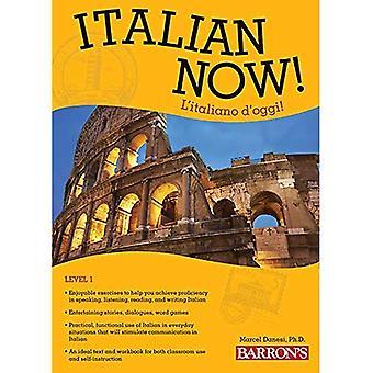 Italiaanse nu! Niveau 1: L'Italiano D'Oggi!