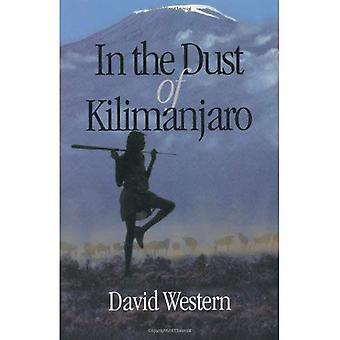 Nella polvere del Kilimanjaro (un libro di Shearwater)