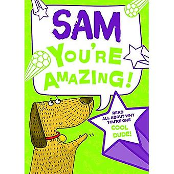 Sam - du bist erstaunlich!: Lesen Sie alles über warum du ein cooler Typ bist!