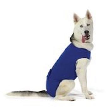 KVP Recova Shirt Xl 53-61Cm (Dogs , Dog Clothes , T-Shirts)