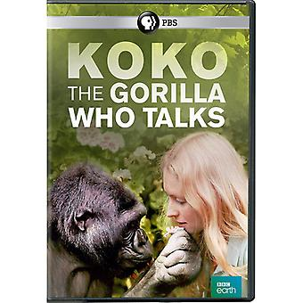 Koko: The Gorilla Who Talks [DVD] USA import