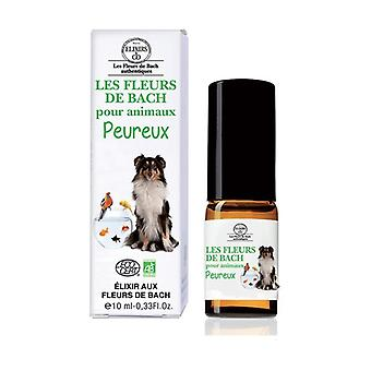 Cowardly Animals Bach Flowers 10 ml of floral elixir