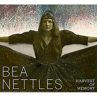 Bea Nettles: Harvest of Memory