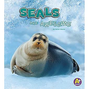 Seals Are Awesome (Polar Animals)