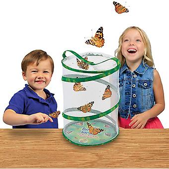Butterfly And Caterpillars Habitat  , Life Science And Education