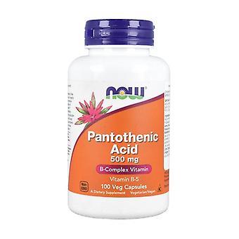 Pantothenic Acid 500 mg 100 vegetable capsules