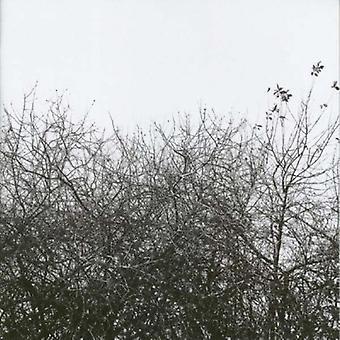 Simon Joyner - perdu avec les lumières allumées importation USA [CD]