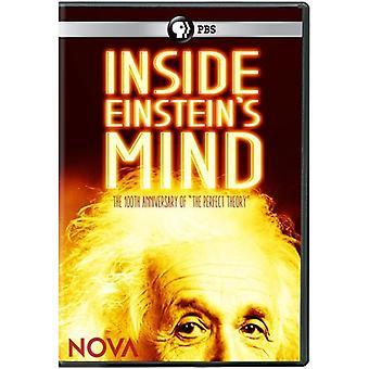 Nova: Dentro la mente di Einstein [DVD] Stati Uniti importare