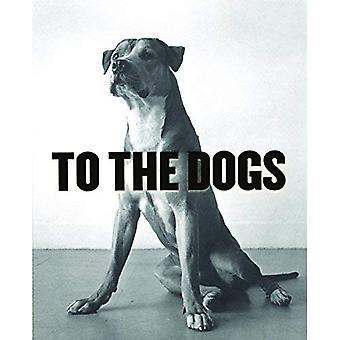 Voor de honden