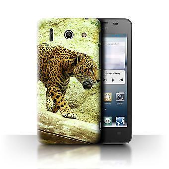 STUFF4 Fall/Abdeckung für Huawei Ascend G510/Jaguar/Nordamerika Tiere
