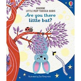 Are You There Little Bat by Taplin & Sam