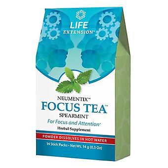 Life Extension Focus Tea, Spearmint 14 Stick Packs