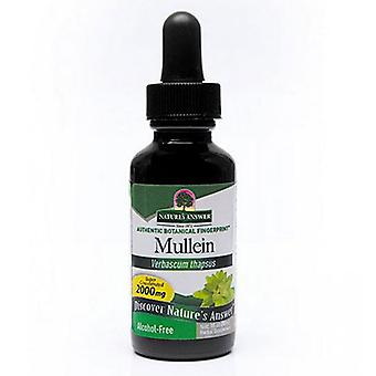 Nature's Answer Mullein Leaf, ALCOHOL FREE, 1 OZ