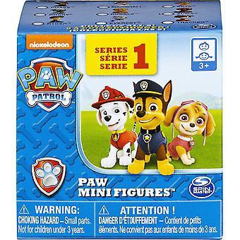 Paw Patrol Mini Figure Blind Box