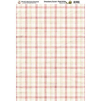 Nitwit Collection - SS Plaid White Paper A4 10 Sheets