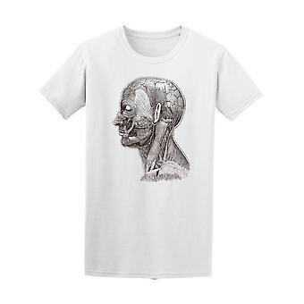 Vintage hovedets anatomi Tee mænds-billede af Shutterstock