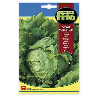Semillas Fitó Green batavia lettuce utebo (Garden , Gardening , Seeds)