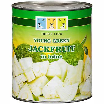 Triple Lion Young Green Jackfruit in Brine