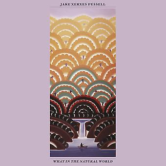 Jake Xerxes Fussell - What in the Natural World [CD] USA import