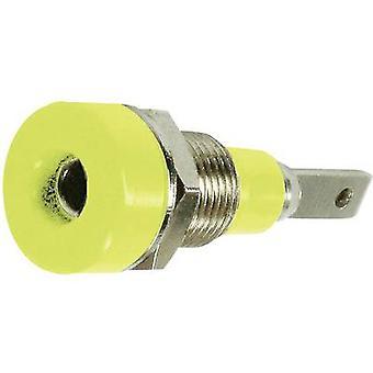 Prise de prise de prise de jack de St-ubli LB-I2R, diamètre vertical vertical d'épingle : 2 mm vert, Jaune 1 pc(s)
