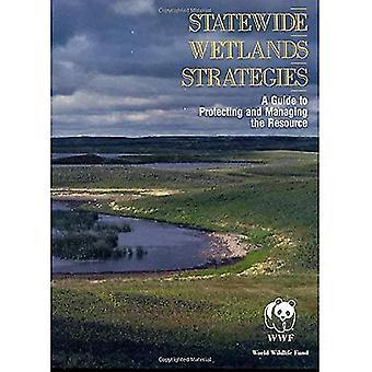 Stratégies de tout l'état de zones humides: Un Guide pour protéger et gérer la ressource