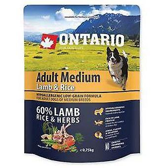 Ontario Adult Medium Lamb & Rice (Dogs , Dog Food , Dry Food)
