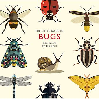 Little Guide to Bugs by Alison Davies