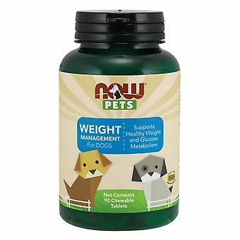 Jetzt Lebensmittel Haustier Gewicht Management, 90 Kaubare Tabs