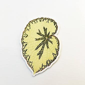 Begonia Leaf Vinyl Sticker