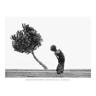 Die Baum-Plakat-Druck von Christiana Ceppas (31 X 23)
