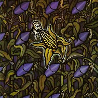 Bad Religion - Against the Grain [Vinyl] USA import