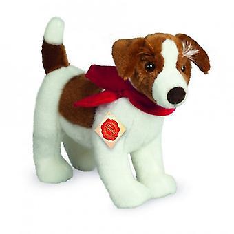 Hermann Teddy Umarmung Hund Jack Russell Terrier