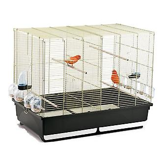 Trixder Tasha Cage Birds (Birds , Cages and aviaries , Cages)