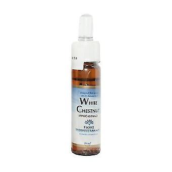 FM White Chestnut (Horse Chestnut) 10 ml of floral elixir