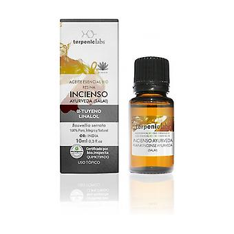 Ayurveda Incense Essential Oil 10 ml of essential oil