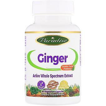 Paradise Herbs, Ginger, 60 Vegetarian Capsules
