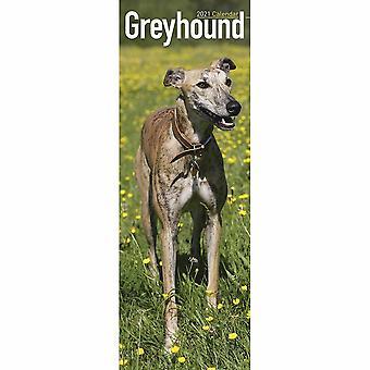 Otter House 2021 Slim Calendar-greyhound