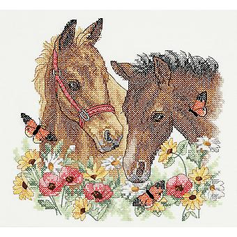 أبعاد ختمها عبر غرزة: أصدقاء الحصان