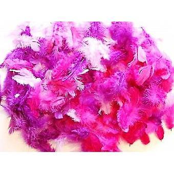 10g Gemengde paarse veren voor ambachten