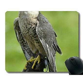 Mouse pads 300x250x3 unique custom mouse pad mousepad flying bird mouse pads