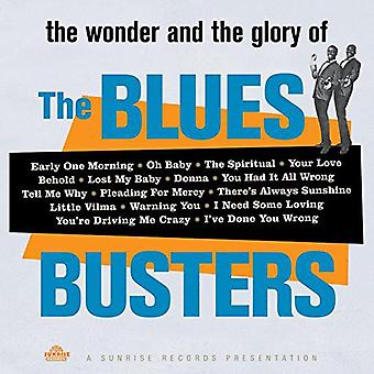 Blues Busters - Wonder & Glory of the Blues Busters [Vinyl] USA import
