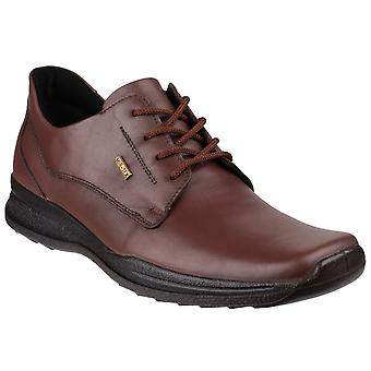 Cotswold Mens Dudley Shoe Brown