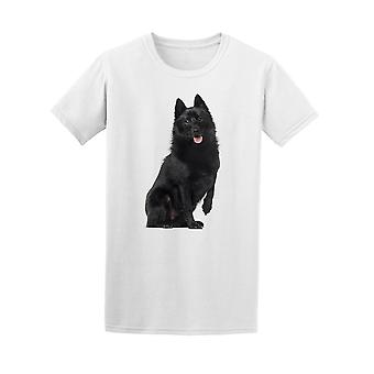 Schipperke sitzen und Keuchen. T-Shirt Herren-Bild von Shutterstock