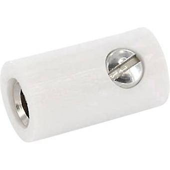 ECON koble HOKWS Jack plugg kobling, rett Pin diameter: 2.6 mm hvit 1 eller flere PCer