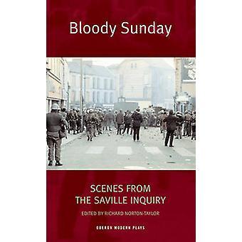 Bloody Sunday - scènes uit het Saville onderzoek door Richard Norton-Tayl