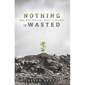 Nothing Is Wasted: How God Redeems What Is Broken
