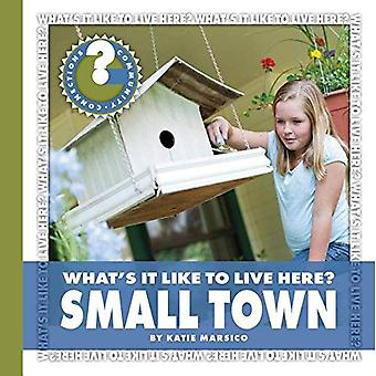 Vad det är som att leva här? Small Town (gemenskapens anslutningar: Vad är det att leva här?)
