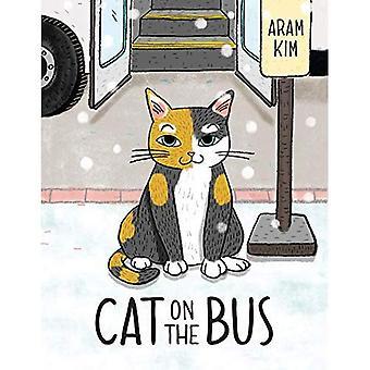 Gatto sul Bus