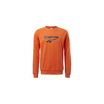 Reebok Classics Vector Crew Sweatshirt FM5031 universelle hele året mænd sweatshirts